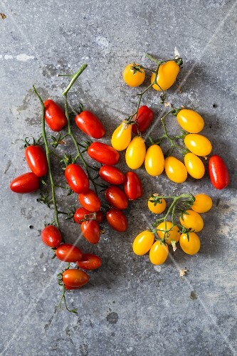 Red and yellow vine tomatoes