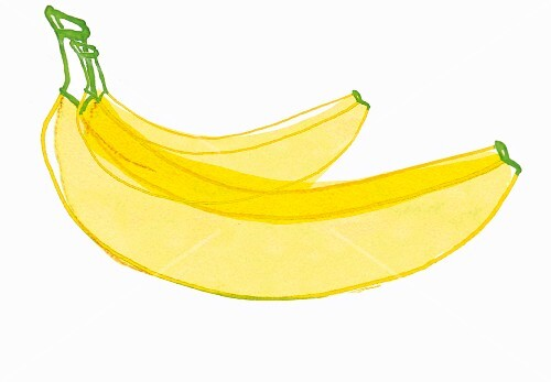 An illustration of two bananas