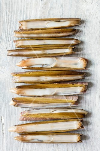 Razor clams on a white wooden table