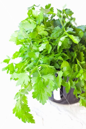 A cup of flat-leaf parsley