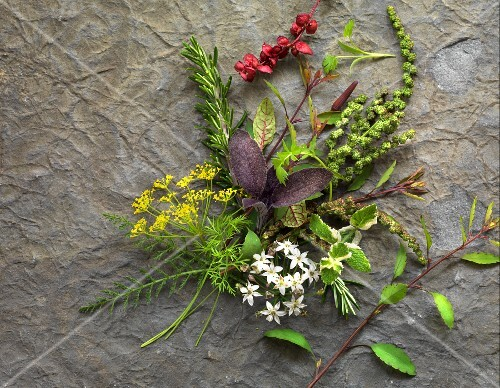 Various fresh herbs and flowers