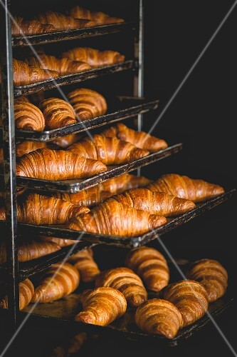 Hot croissants on baking trays