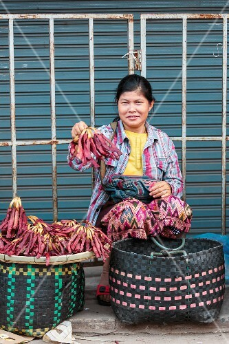 Young woman selling dried meat at a market in Vientiane, Laos