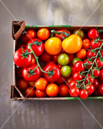 Various tomatoes in a crate