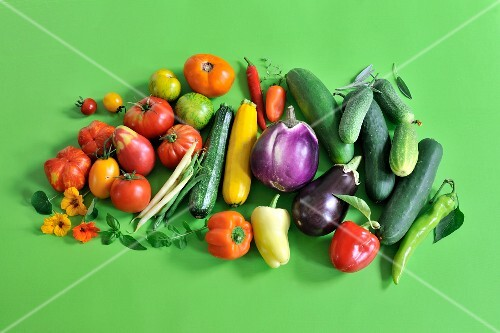 Still-life of summer vegetables with tomatoes, courgettes, aubergines and cucumbers