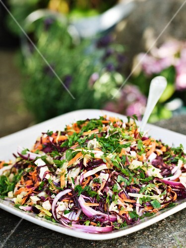 Cabbage salad with onions and carrots