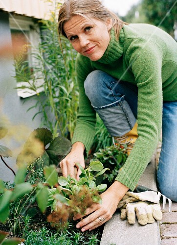 A woman planting plants in a bed