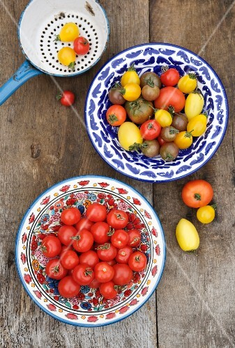 Ceramic bowls with tomatoes in a variety of colors