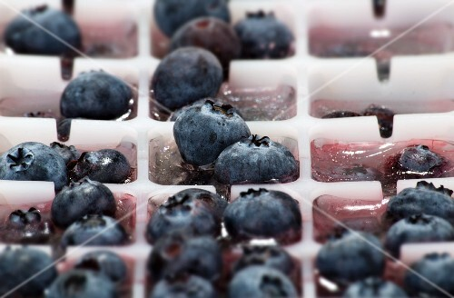Ice cubes with blueberries in an ice cube tray