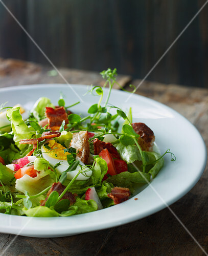 Spring salad with fried bacon and boiled egg