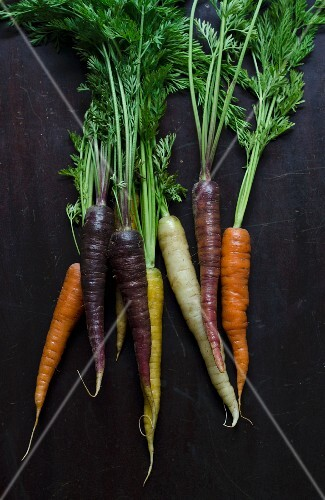 Five Varieties of Baby Carrots; Atomic Red, Bambino Orange, Cosmic Purple, Lunar White and Solar Yellow