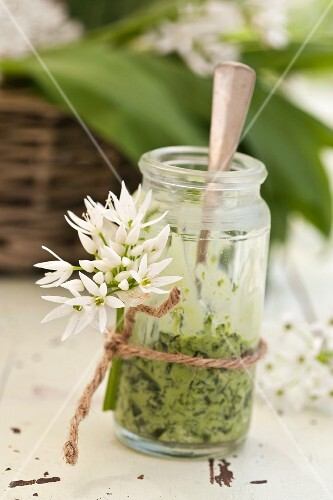 Wild garlic spread