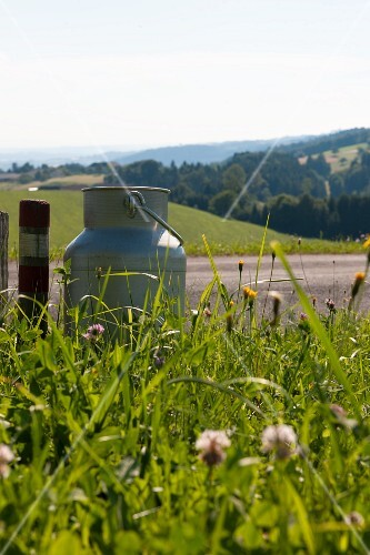 A milk churn in a field by a road