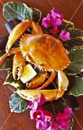 A crab on leaves with lemon