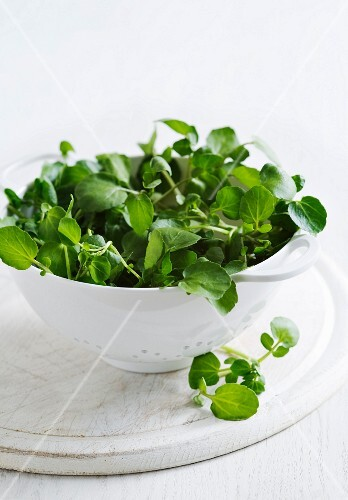 Fresh watercress in a colander