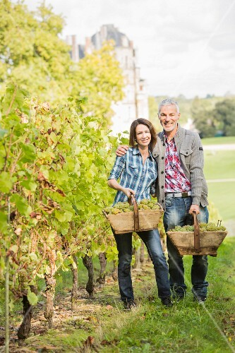 A couple with baskets of freshly picked grapes in a vineyard
