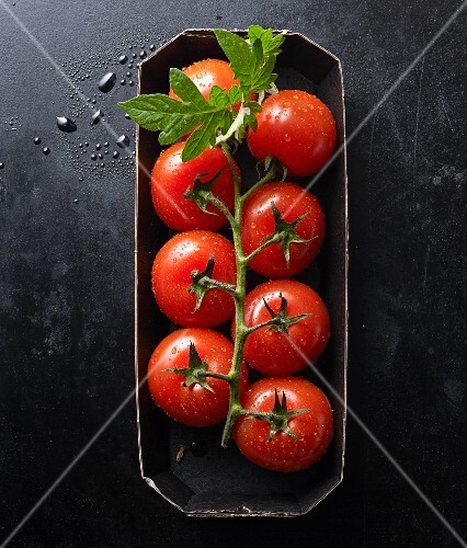 Fresh tomatoes with a leaf in a carton