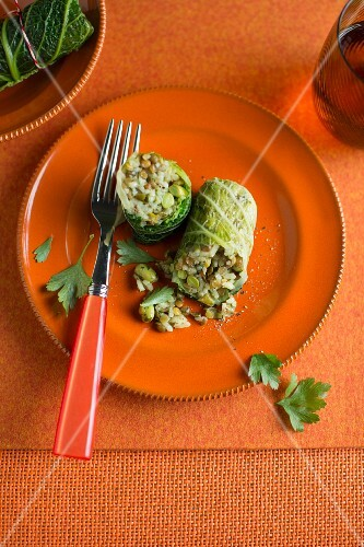 Savoy cabbage roulade filled with rice