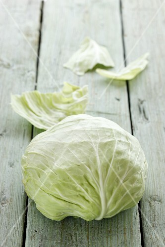 A Jaroma cabbage