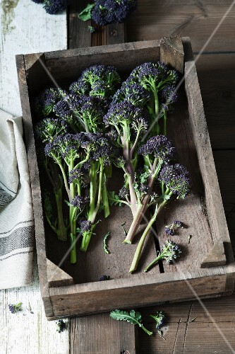 Purple broccoli in a wooden crate