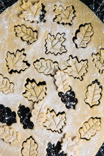 Leaf-shaped biscuits cut out of biscuit dough