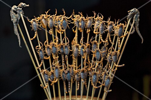 Scorpions and seahorses on sticks as snacks as a Chinese market stand