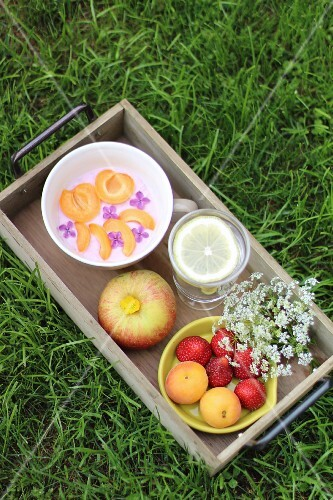Yoghurt, fruit and drinks on a wooden table on the grass
