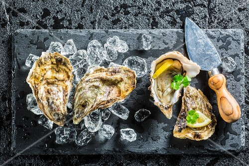 Fresh oysters on black stone with ice cubes