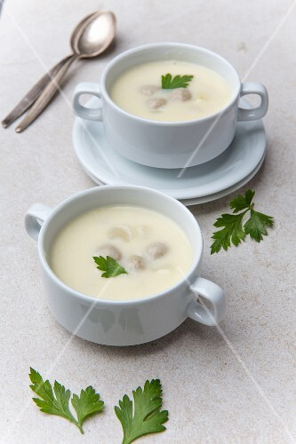 Cream of asparagus soup with meat dumplings