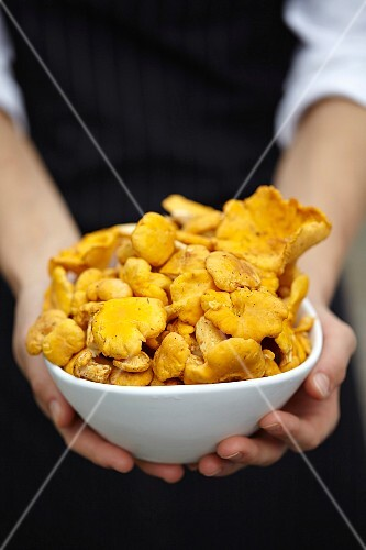 A woman holding a bowl of chanterelle mushrooms