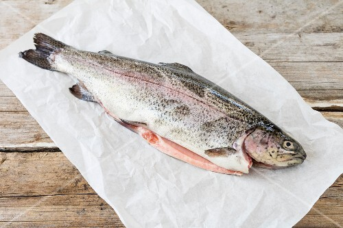 A fresh salmon trout on a piece of paper