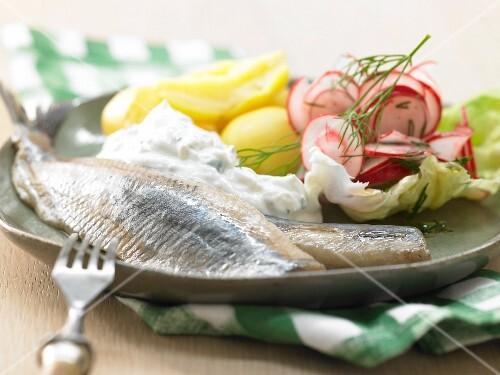 Soused herring with horseradish quark and radishes
