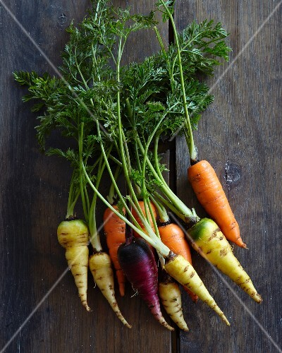 Various varieties of carrots