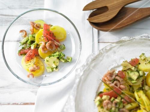 Potato and avocado salad with shrimps
