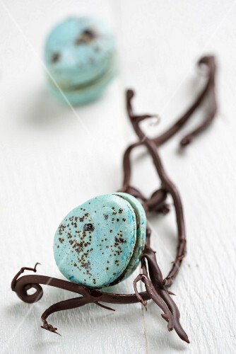 Blue macarons with chocolate twigs