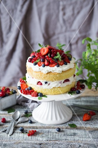 Sponge cake with mascarpone and vanilla cream and fresh berries