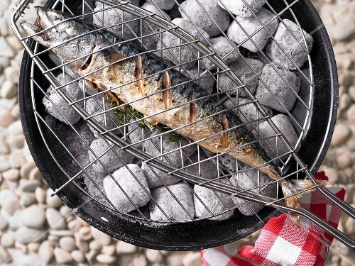 A barbecued herb mackerel with lemon balm