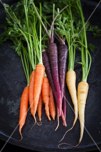 Assorted colourful mini carrots