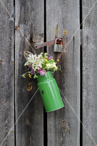 Flowers in old enamel milk churn on wooden door