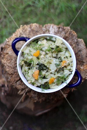 Young cabbage with carrots and dill