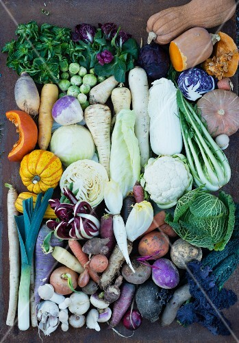 Assorted vegetables for the cold time of year (seen from above)