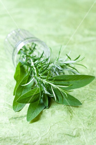 Fresh sage and rosemary in a glass on its side