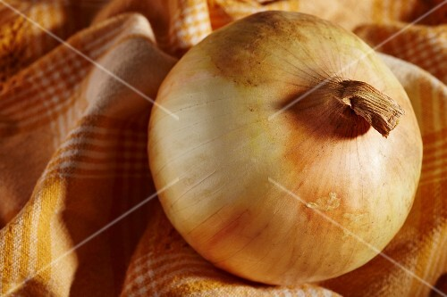 A sweet onion from Pennsylvania, USA