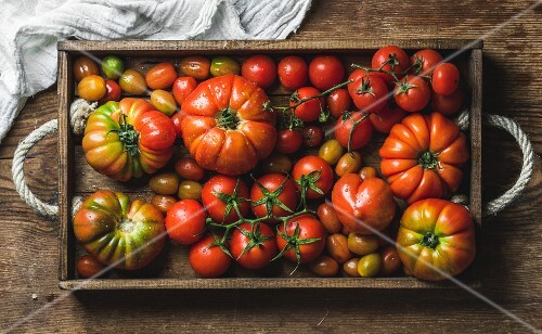 Colorful Heirloom tomatoes in rustic wooden tray over dark wooden background