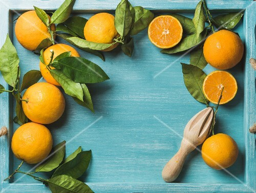 Fresh oranges with leaves on blue painted wooden background