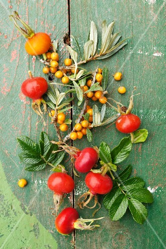Rose hips and sea buckthorn berries