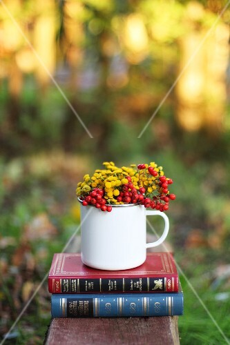 Flowers and berries in an enamel jug as an autumn decoration