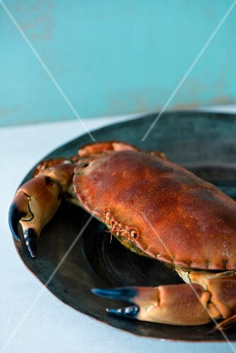 A crab on a tin plate