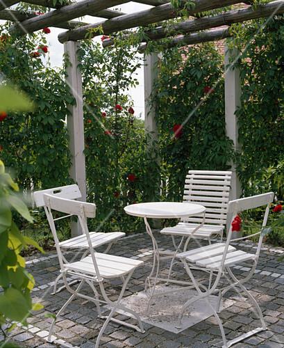 pergola mit parthenocissus wildem wein und rosa rosen bild kaufen friedrich strauss. Black Bedroom Furniture Sets. Home Design Ideas