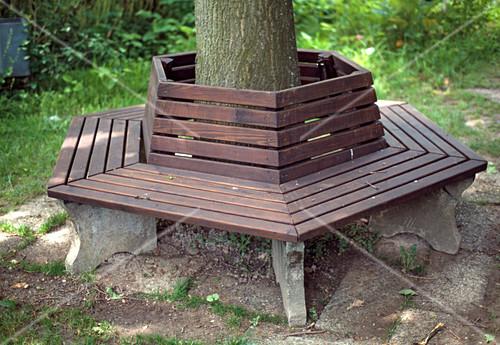 gartenbank um einen gro en baum bild kaufen friedrich. Black Bedroom Furniture Sets. Home Design Ideas